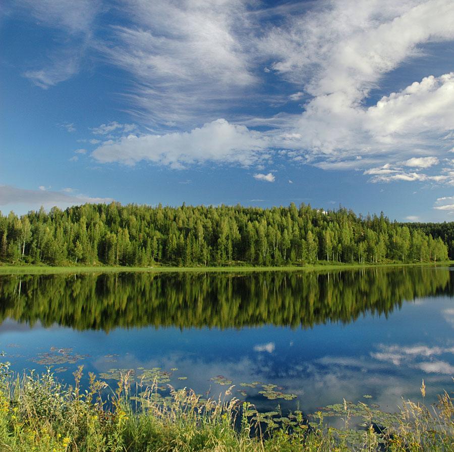 Lac et forêt - naepflin.com Photo Blog